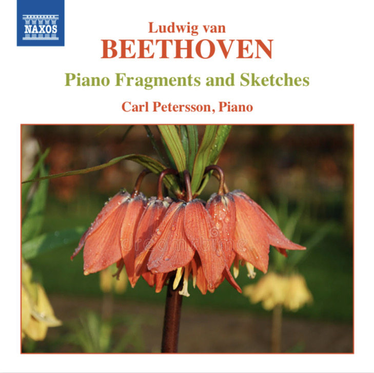 Beethoven: Fragments